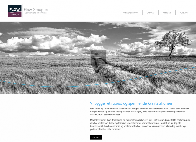 FLOW Group websider